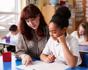 Paraprofessionals add to the overall instructional capacity of districts